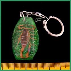 Porte-clefs avec véritable scorpion jaune du désert