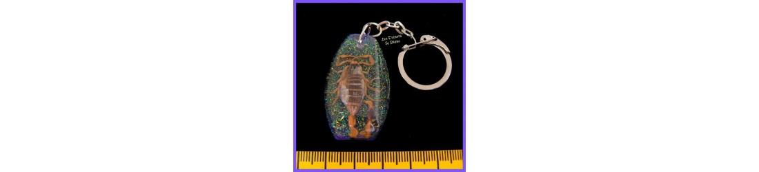Bijoux porte-cles avec scorpions et insectes discount Les Tresors de Diane