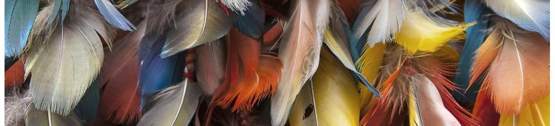 Boucles d'oreilles en plumes naturelles LES TRESORS DE DIANE